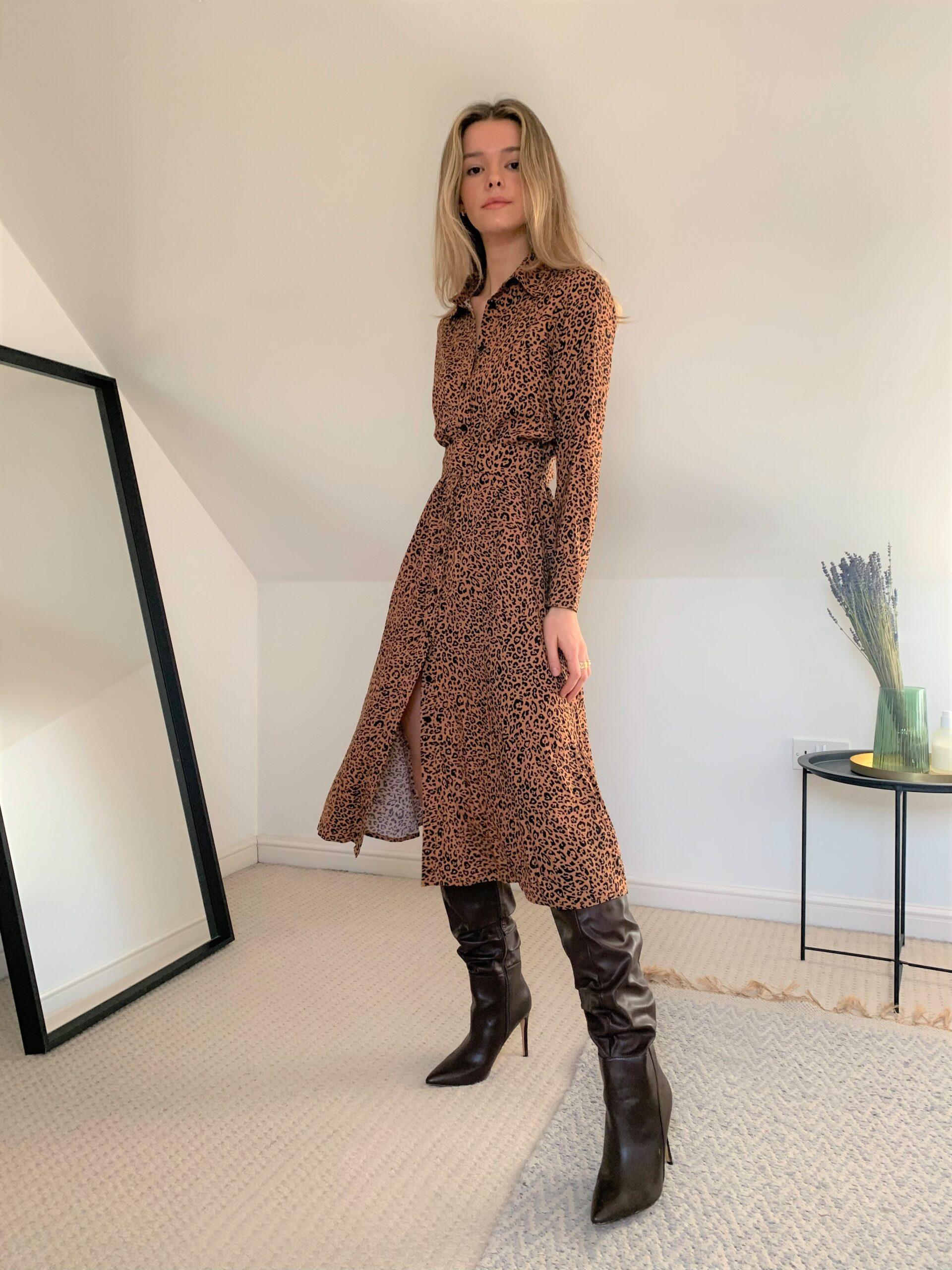 Dana Leopard Print Shirt Dress
